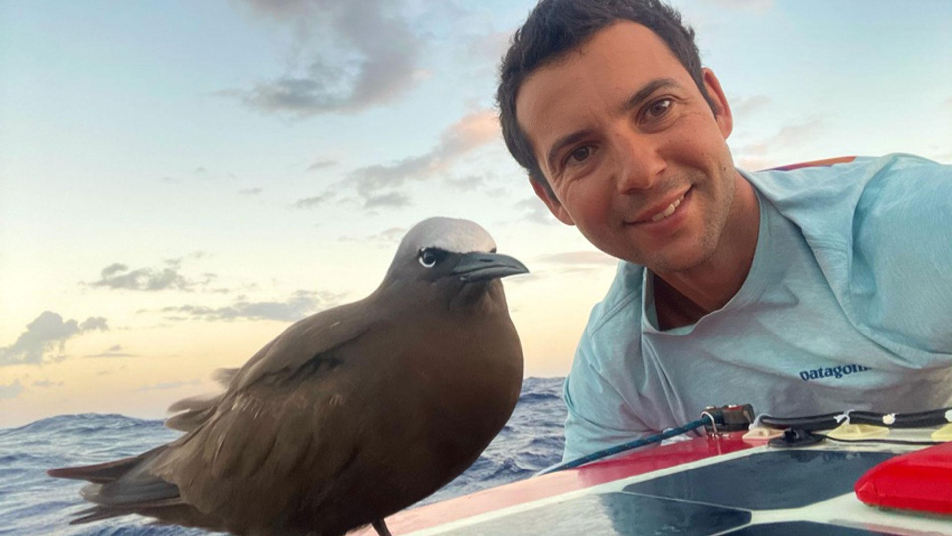 Le navigateur Guirec sur son monotype avec un oiseau des mers