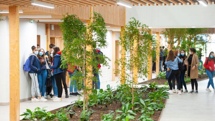 Lycéens à l'intérieur en bois du lycée Simone-Veil