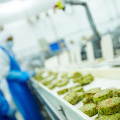 Chaîne de production agroalimentaire de l'entreprise Cité Marine