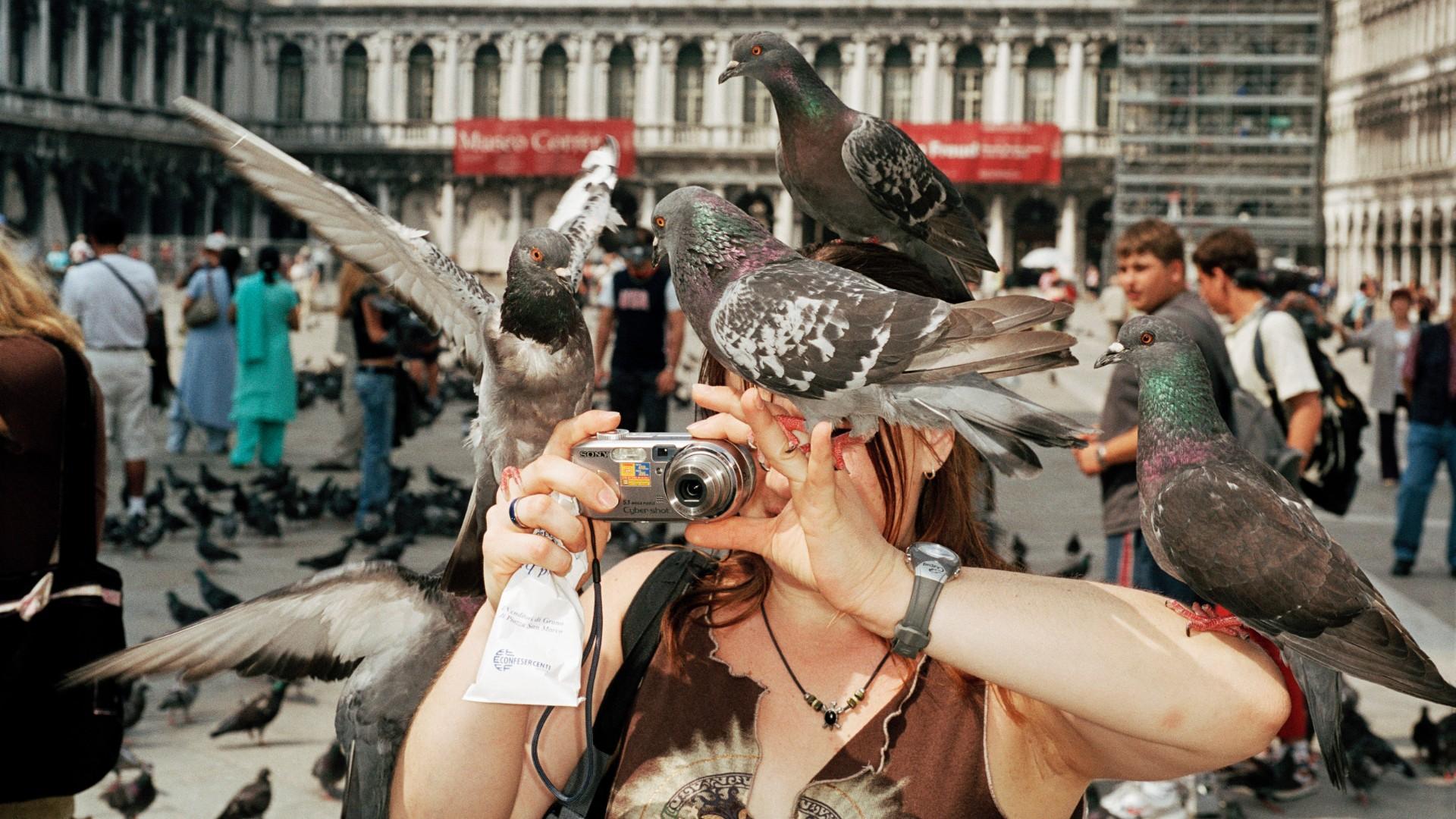 gros plan sur une femme se prenant en selfie couverte de pigeons sur la place Saint-Marc de Venise