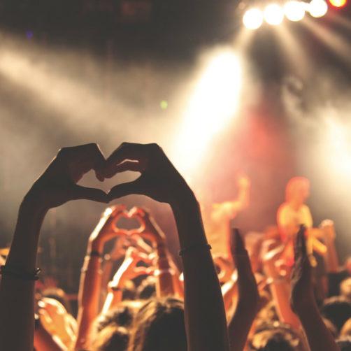 personnes à un concert