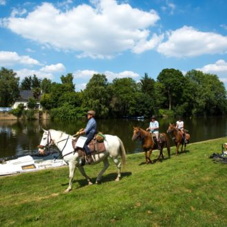 Cavaliers le long de la Vilaine, à Guichen (35)
